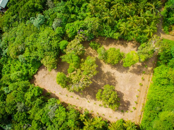 land for sale in vieux fort