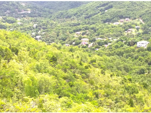 land for sale at monchy gros islet
