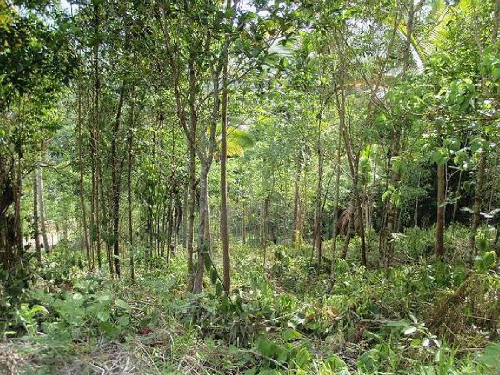 labories land for sale