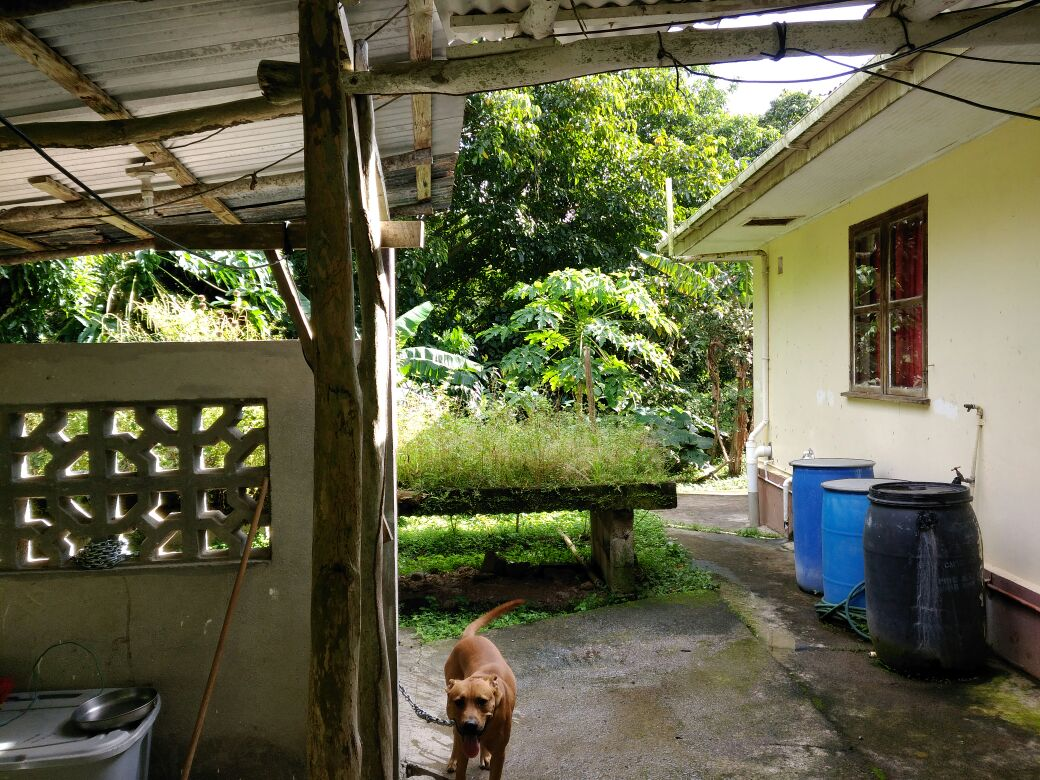 soufriere homes for sale st lucia caribbean