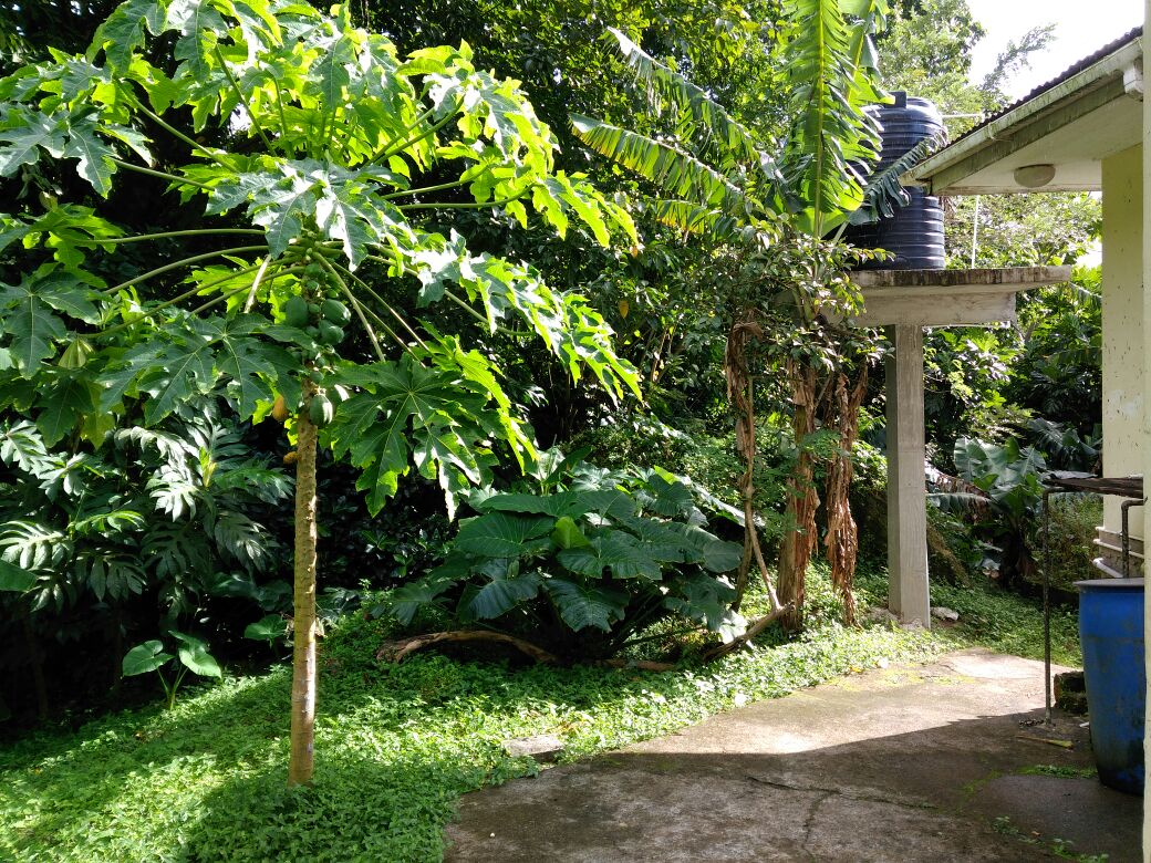 soufriere homes for sale st lucia