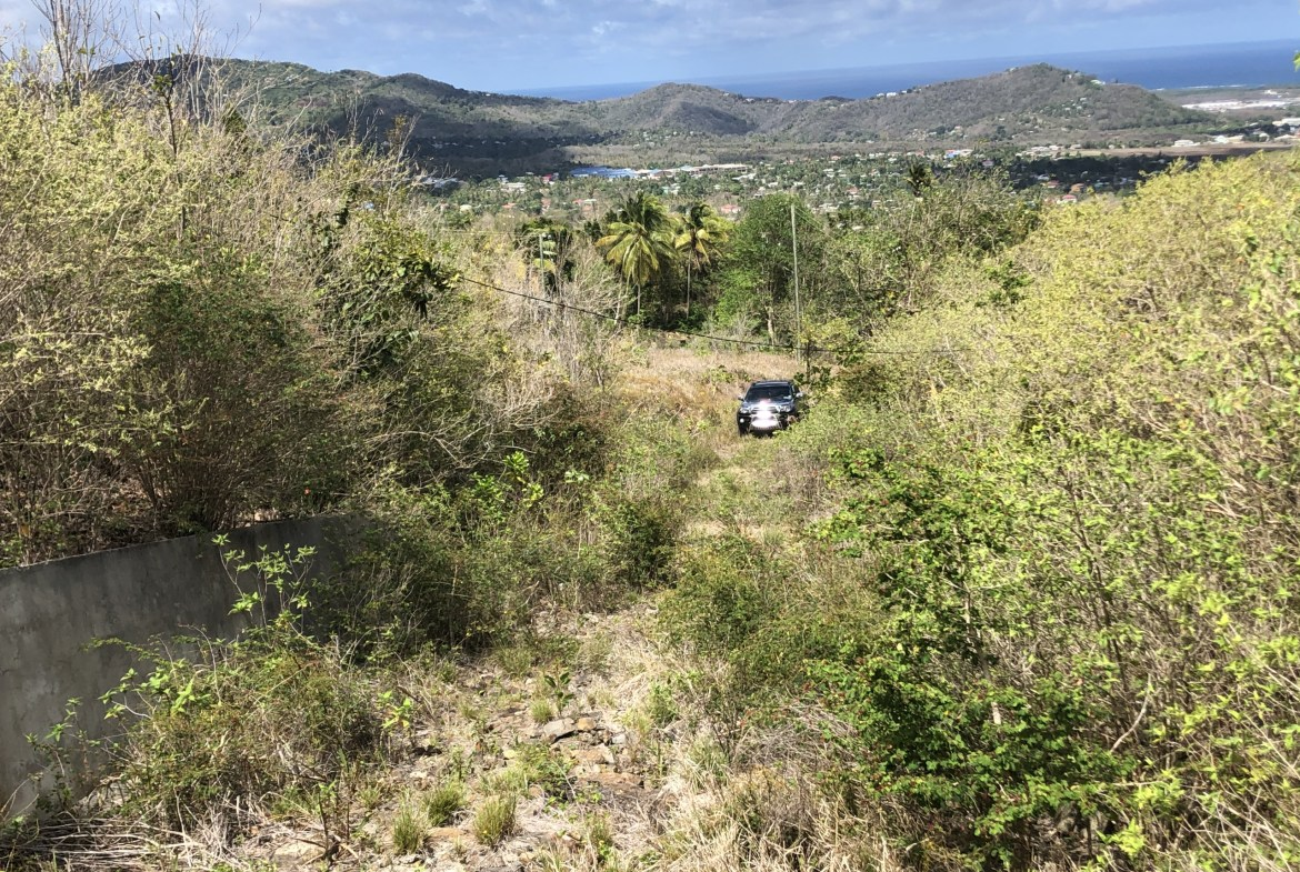 land for sale in laborie driveway