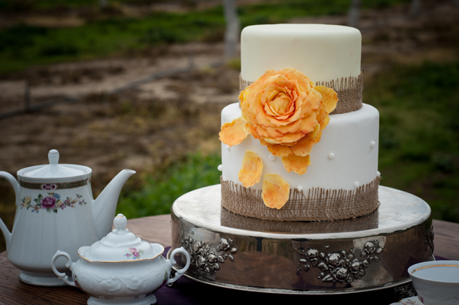 28Oakdale+Wedding-3143095694-O