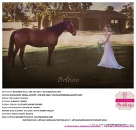 Sacramento_Wedding_Photographer_Real_Sacramento_Weddings_Lawley_Ranch-_0027