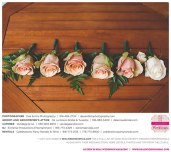 Dee-&-Kris-Photography-Danitza&Steven-Real-Weddings-Sacramento-Wedding-Photographer-_0012