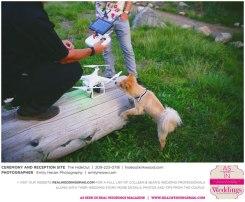 Emily-Heizer-Photography-Colleen-&-Sean-Real-Weddings-Sacramento-Wedding-Photographer-_0080
