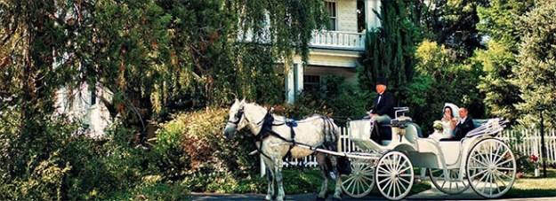 Sacramento_Wedding_Wedding_Venue_Newcastle_Wedding_Gardens_Carriage