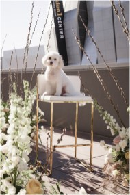 Sacramento Wedding Decor Rentals Design