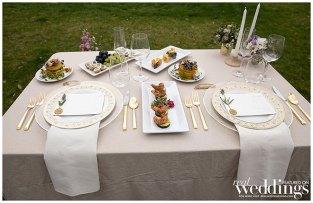 Hawk-Meadow-Studio-Sacramento-Real-Weddings-Magazine-Honey-Bee-Good-Layout-WM_0009