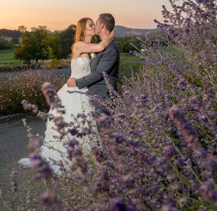 Shelby & Blake in the Lavender-Justin Buettner Sacramento Wedding Photographer