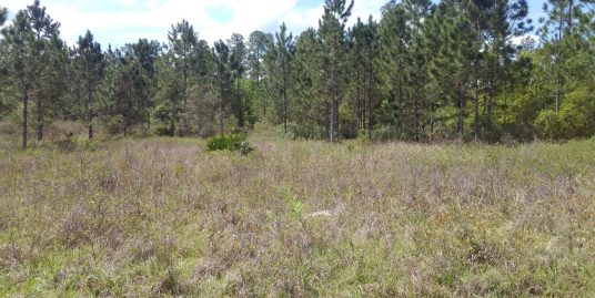 37 Acres Winding River Preserve