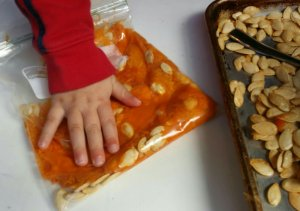 fall crafts with kids | squishing pumpkin seeds in a Ziploc bag