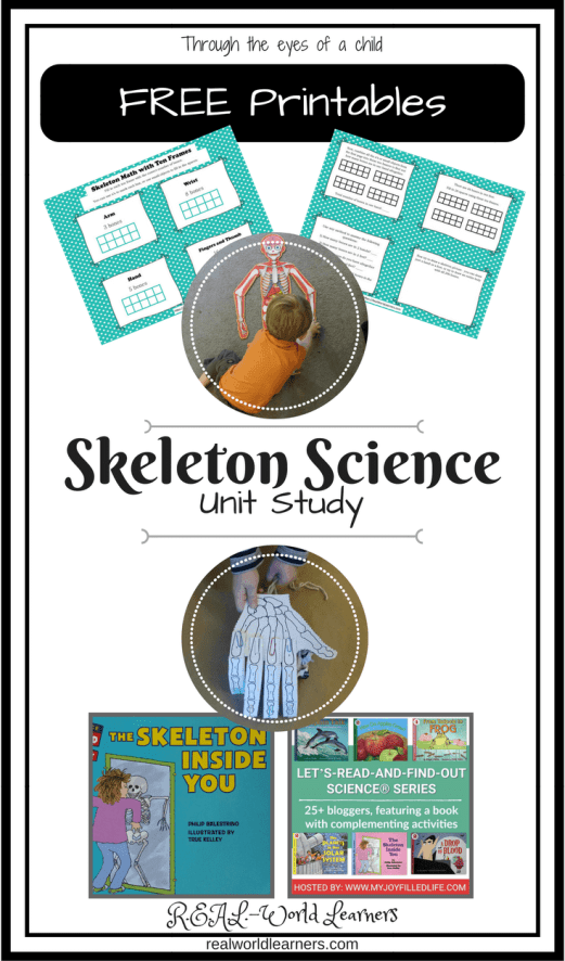 Unit Study on skeletons and how our body works with a free printable, recommended activities, digital resources, and books.