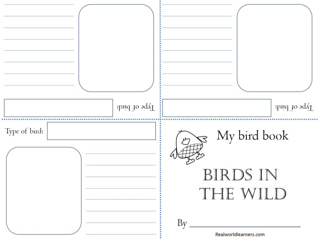 graphic about Free Printable Mini Book Template named Character analysis absolutely free printable Chook E-book ⋆ R.E.A.L.-Global Pupils