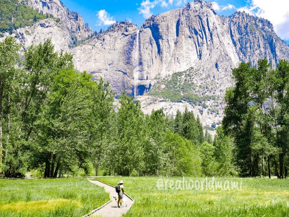 Cook Meadows Yosemite