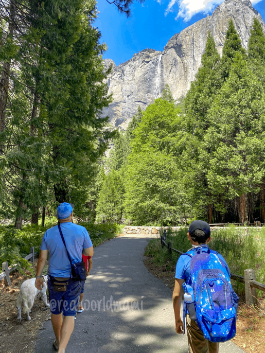 Yosemite Family visit after COVID