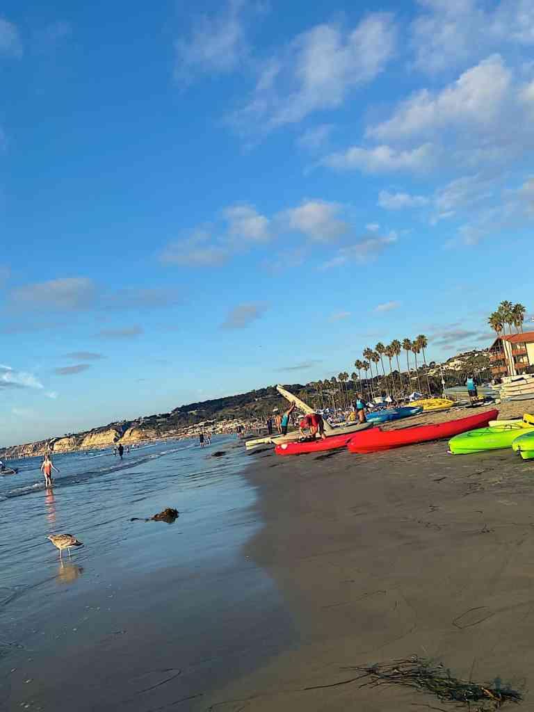 kayak at la jolla