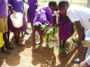 Photo of The Head Girl planting one of the trees for Tree Planting