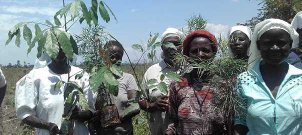 Ladies with cuttings to plant