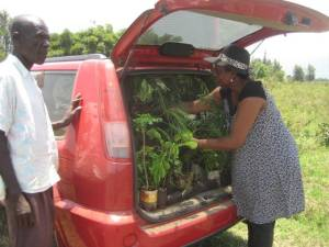 Margaret with her trees to be planted