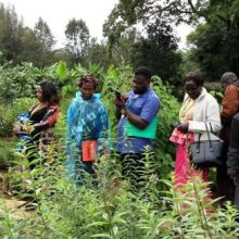 Sr-Francisca-shows-plants-in-her-garden-to-other-participants-during-seminar-May-2018