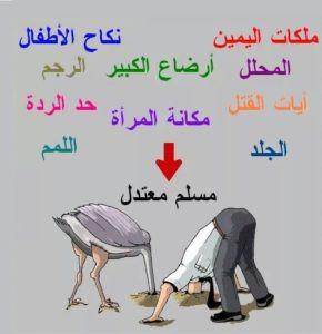 المسلم المعتدل كالنعامة امام مفاهيم الدين المتطرفة