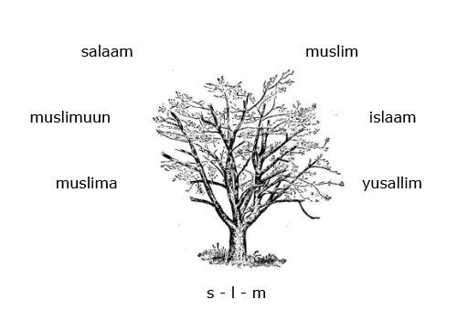 An introduction to the root and pattern system in Arabic