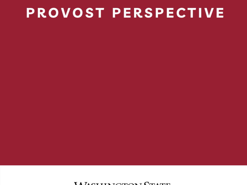 WSU Provost Perspective