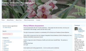 Penny WIlliams Acupuncture