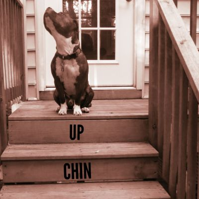 KEEP YOUR CHIN UP