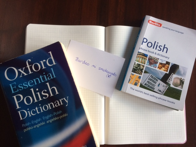 polish dictionary phrasebook