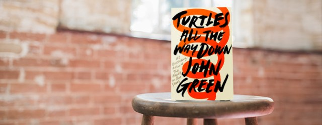 Turtles All the Way Down review header