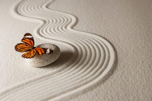 In the fleeting passage of a butterfly, hope for all those who are grieving
