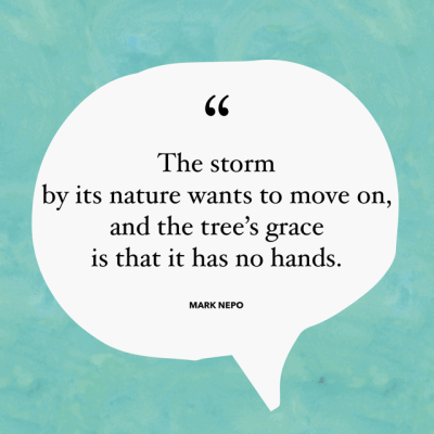 The storm by its nature wants to move on, and the tree's grace is that it has no hands. – Mark Nepo