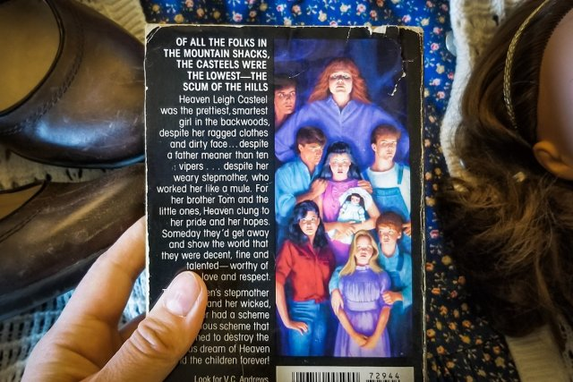 """Back cover of """"Heaven"""", featuring the stepback image from the book."""