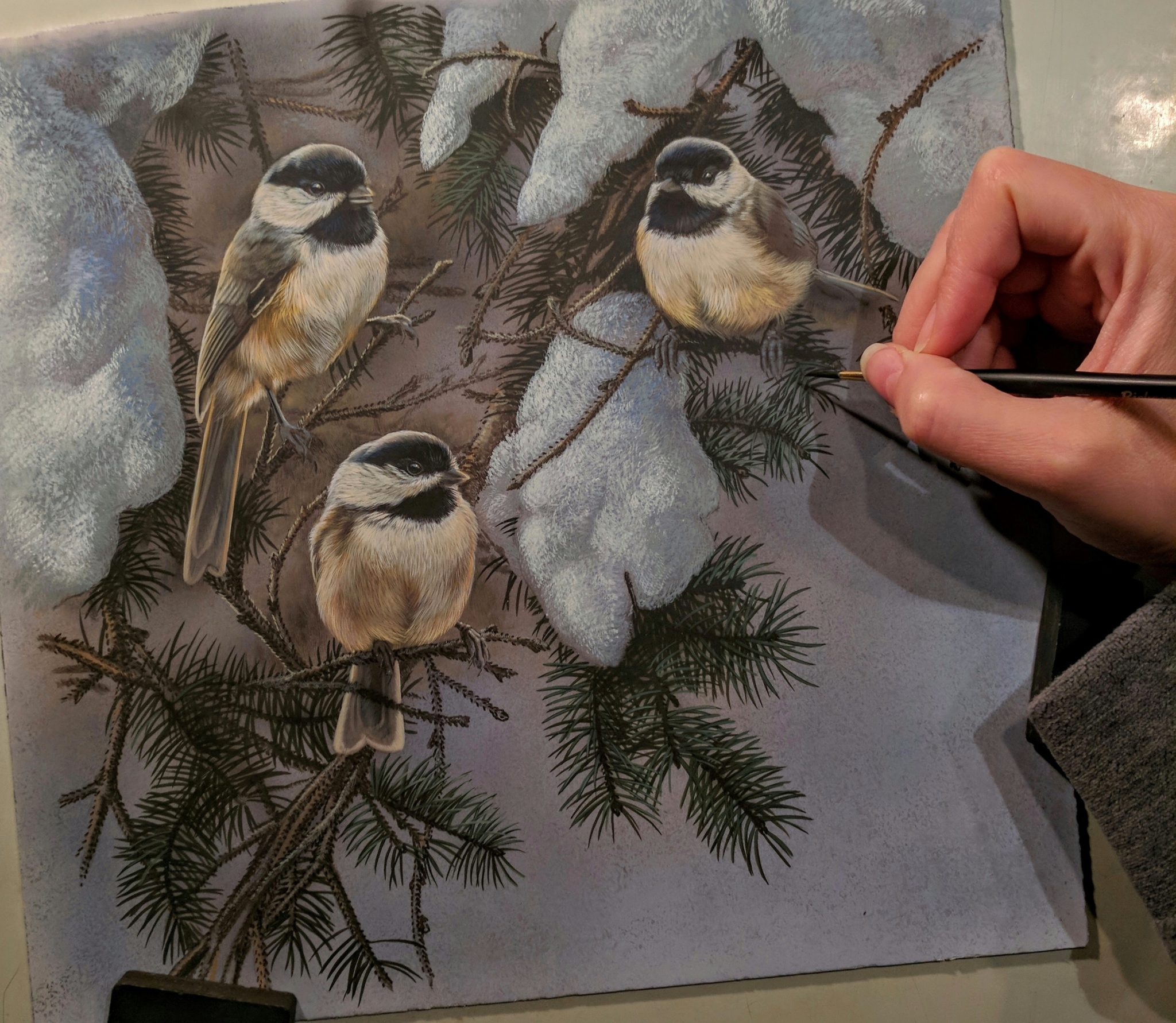 Peek In The Studio – Winter Songbirds