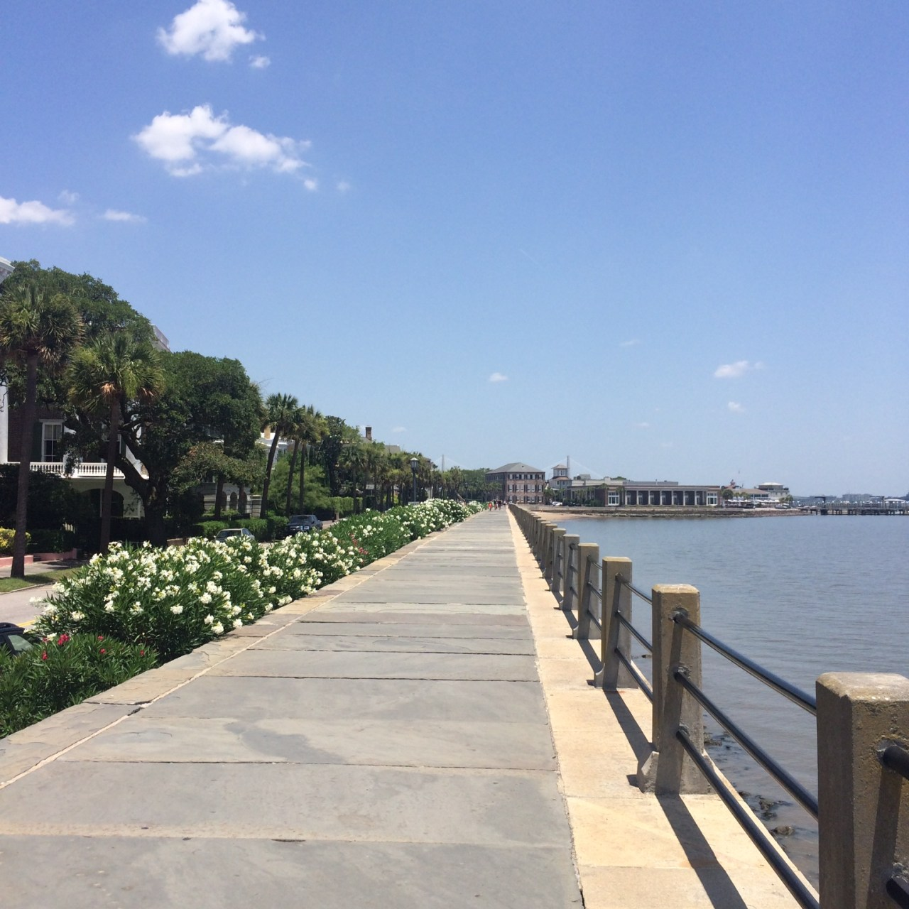 A Beginner's Guide to Charleston, South Carolina