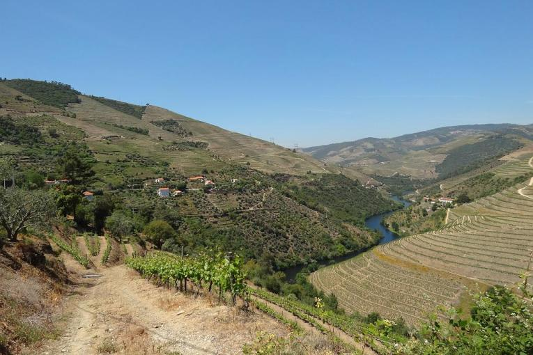 High above the Douro