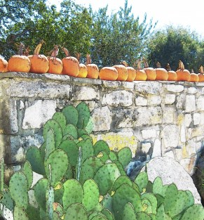 autumn-in-texas