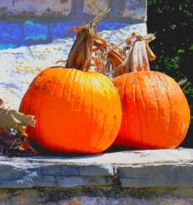 pair-opumpkins