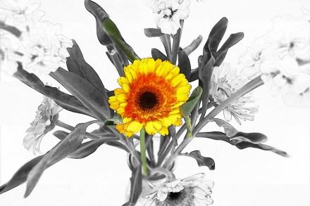 sunflower_bouquet_cs_sketch