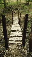 walking-bridge-subtle-shades