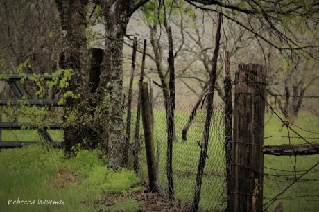 Hurricane & Barbed Wire Fence 3