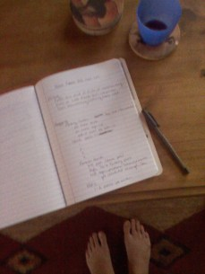Making my goal list the first morning. I think I only marked off about 1/3 of this.