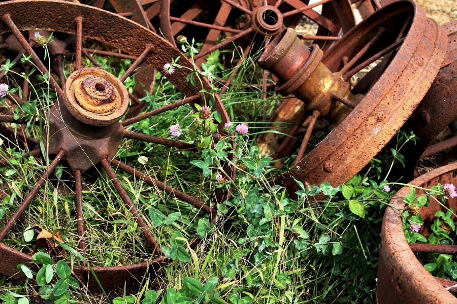 when life gets away, tangled wheels, overgrown weeds, compassion