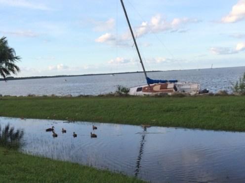 Three boats washed ashore