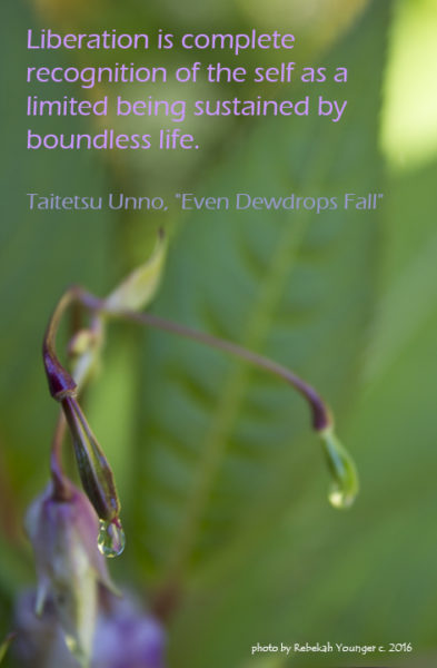 Dewdrop Falls quote