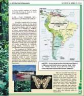 AmazoniaEUA1