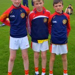 Cork Primary School Skills Finals Football