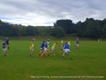 Rebel Og U13 Hurling Aug 10th 2016 (13)
